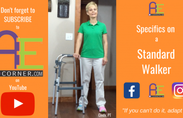 Specifics of a Standard Walker